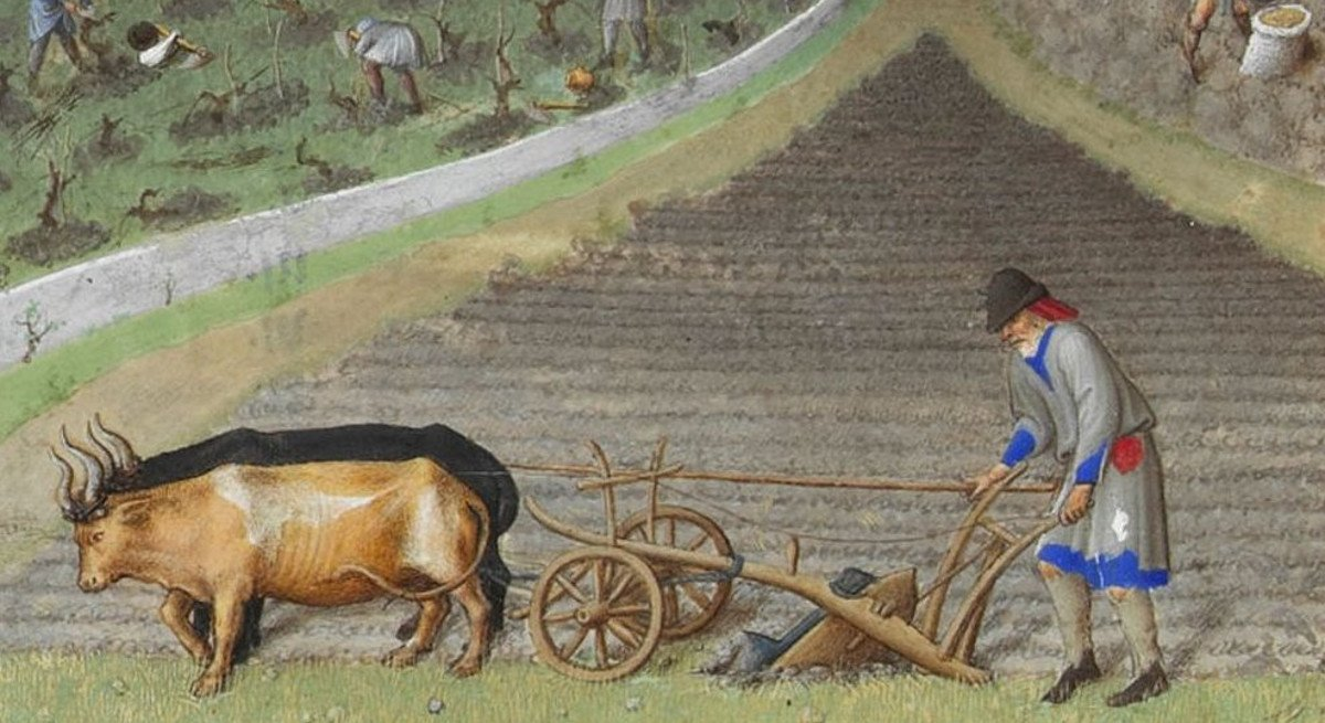 Worldbuilding: Agriculture in an Early-Medieval World